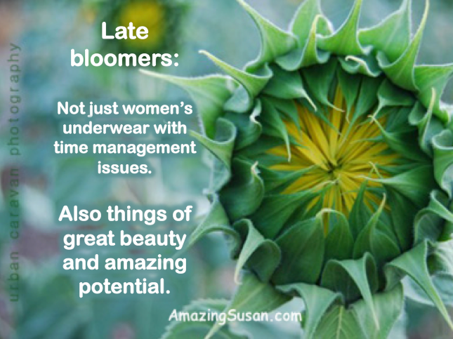 Late Bloomer?