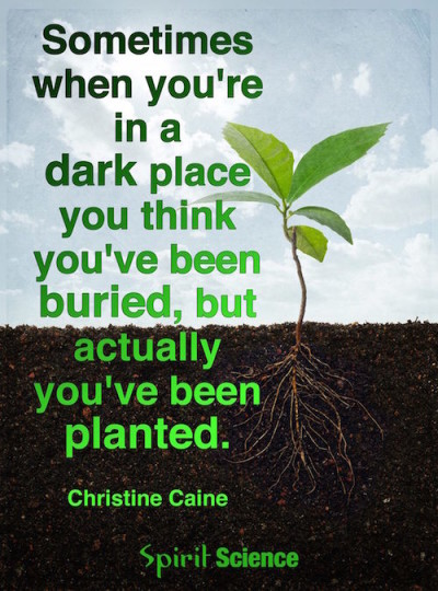 Christine Caine you've been planted