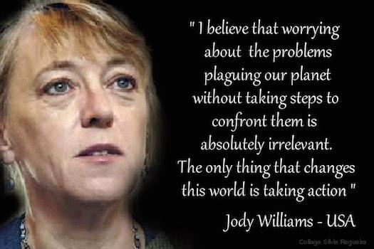 Jody Williams worry is irrelevant